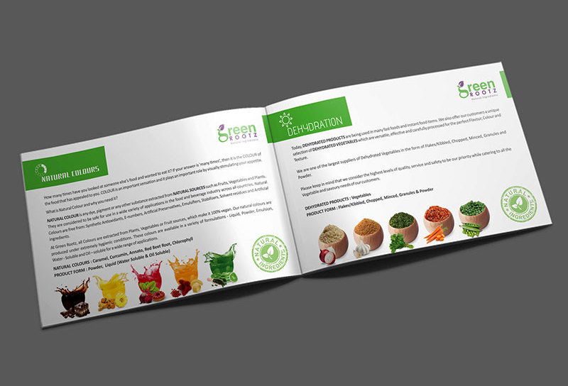 brochure-design-at-ahmedabad-green-rootz-3
