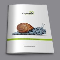 brochure design for Cosmic Machines