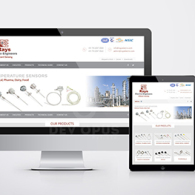 rays electro website design development ahmedabad-1