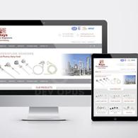 rays electro website design development ahmedabad-1