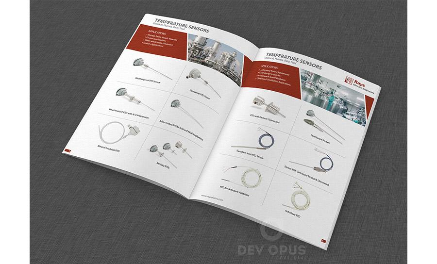 Rays Electro Engineers brochure - 2